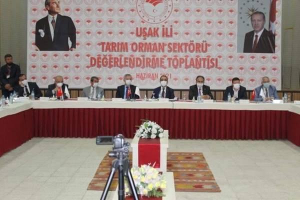 Tarım ve Orman Bakan Yardımcısı Akif Özkaldı,Sektör Buluşması İçin Uşak'ta...